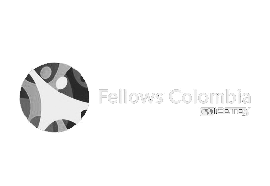 FELLOWS COLOMBIA